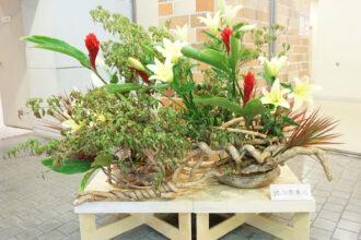 佐野市民文化祭華道展